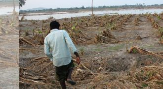 Crop damage_Climate_Change_1440