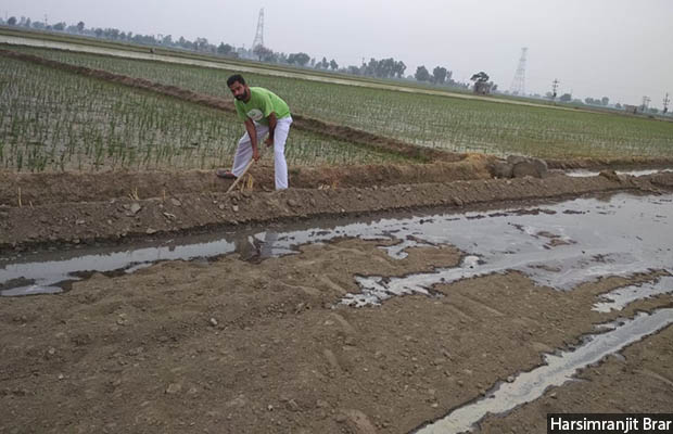 Harsimranjit Brar, from a farming family in Sri Muktsar Sahib, Punjab, feels that farmers need more technical know-how on climate relevant to their situation. State-wise or regional advisories ignore the fact that the characteristics of land differ from area to area.