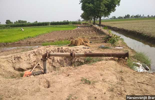 Harsimranjit Brar's family in Sri Muktsar Sahib, Punjab, is grateful for the government subsidies that reduced the cost of a tubewell from Rs 100,000 to Rs 9,000. However, he acknowledged that this benefit has not been extended to all the needy farmers, many of whom cannot afford electricity.